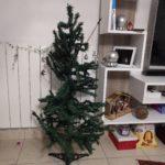 Albero di Natale distrutto dal gatto