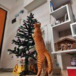 Gatto che si arrampica sull'albero di Natale